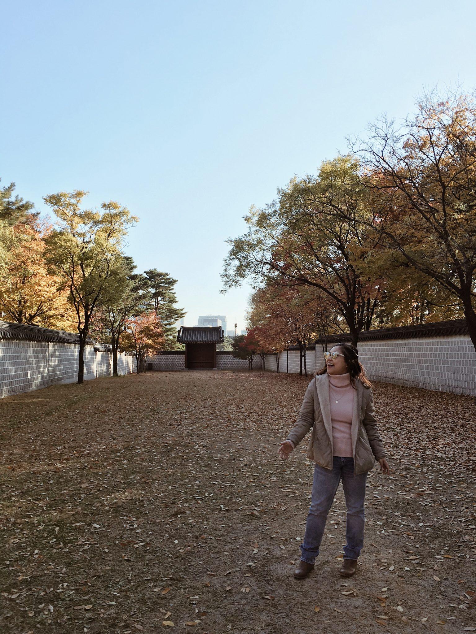 Gyeongbokgung Palace Fall Leaves