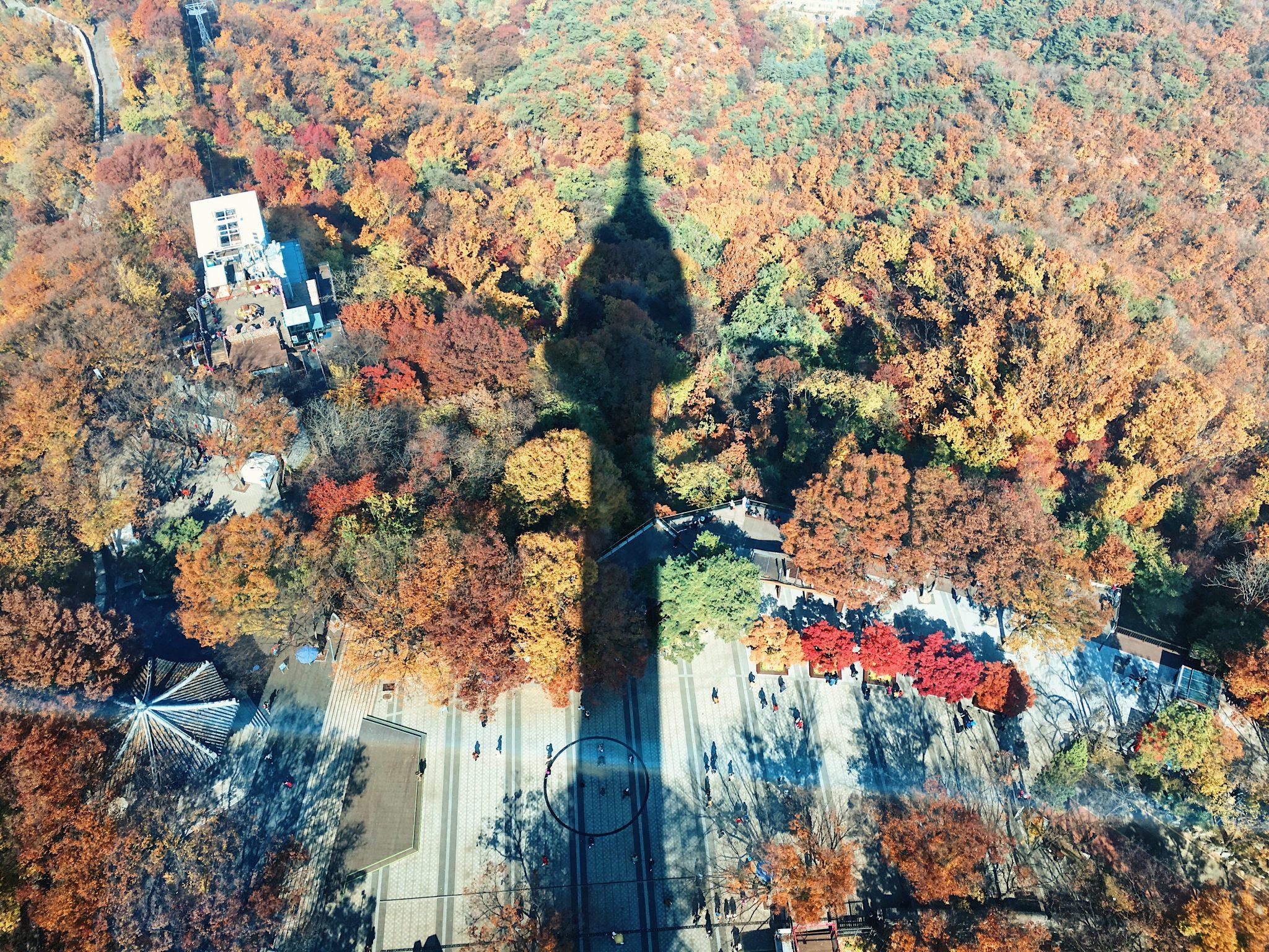 N Seoul Tower Shadow